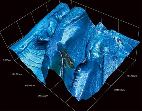 Risultati immagini per HIROX 3D DIGITAL MICROSCOPE BIOLOGY